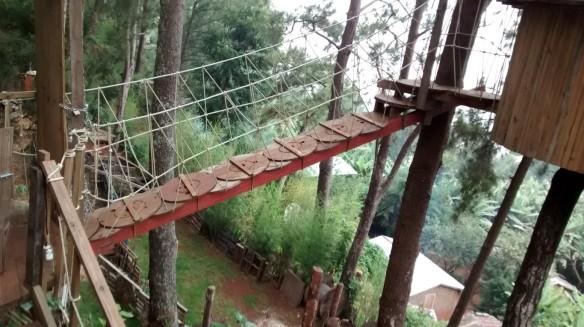 Bridge to the treehouse suite.
