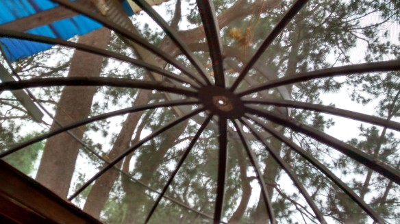 Ceiling possibly made out of satellite dish.